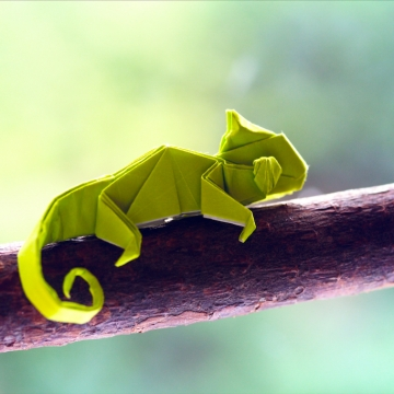 pablito, green origami chameleon, designed by Quentin Trollip
