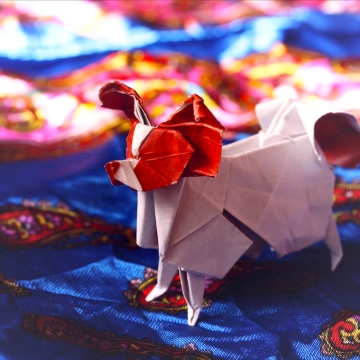 continental, origami papillon dog, designed by Hideo Komatsu