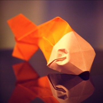 fishy, origami gold fish, designed by Davor Vinko
