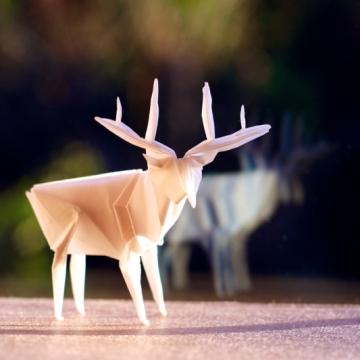 patronus, origami stag, designed by Jun Maekawa