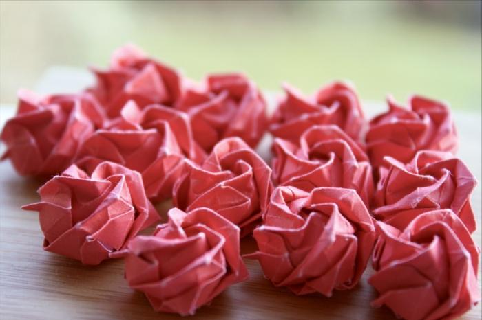 like roses sprung