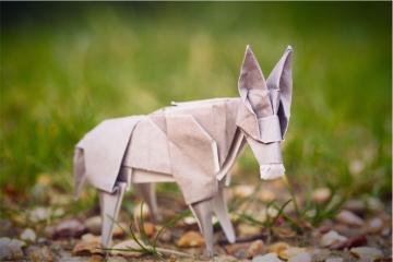little donkey, origami donkey, designed by Roman Diaz