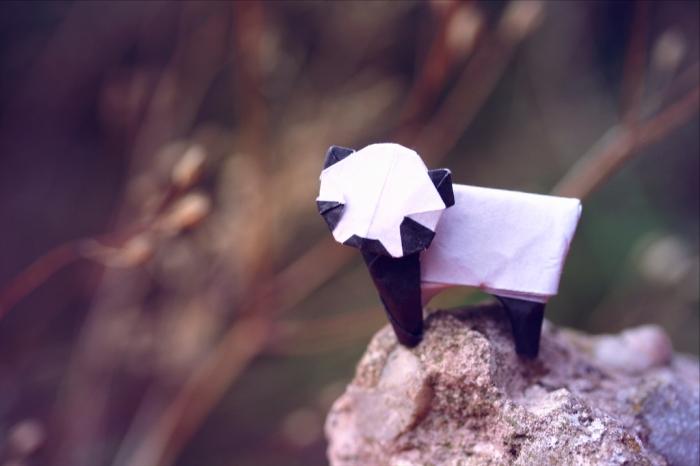 panda lonesome