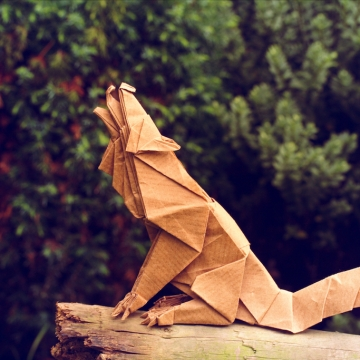 (grey) wolf, origami wolf designed by Quentin Trollip