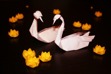 together, pair or white origami swans surrounded by yellow waterlilies, designed by Daniel Sancho