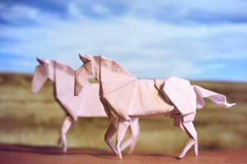 we shall run, origami white horses, designed by Hideo Komatsu