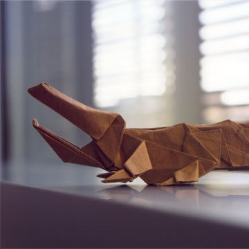 Rutherford, origami crocodile, designed by Patricio Tomic