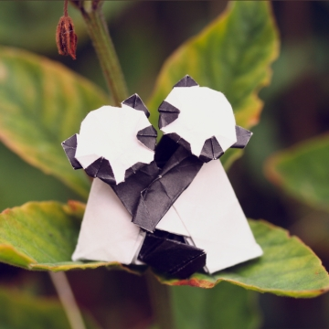 panda affection, origami panda pair, designed by Yamada Katsuhisa
