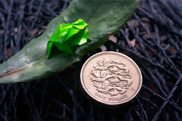 52 weeks of tinygami, miniature origami frog