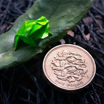 52 weeks of tinygami, miniature origami frog